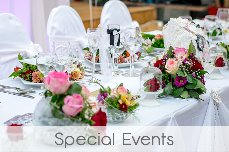 vnl-events-special-events